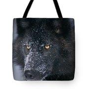 T.kitchin Tk1731e, Gray Wolf, Timber Tote Bag