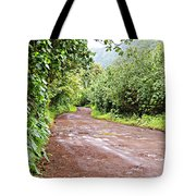 To Seclusion Tote Bag