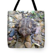 Toad Of Toad Hall Tote Bag