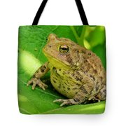 Toad Sitting Tote Bag