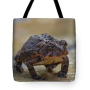 Toad Takes A Stance Tote Bag