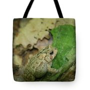 Toad Under Cover  Tote Bag