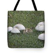 Toadstools V5 Tote Bag