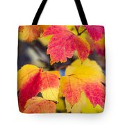 Toasted Autumn - Featured 3 Tote Bag