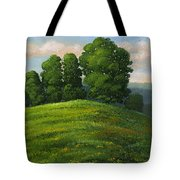 Toboggan Hill Tote Bag