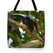 Toco Toucan Amazon Jungle Brazil Tote Bag