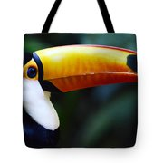 Toco Toucan Brazil Tote Bag