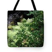 Tod Creek  Tote Bag