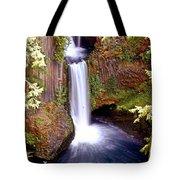 Tokatee Falls 1 Tote Bag