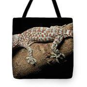 Tokay Gecko In Defensive Display Tote Bag