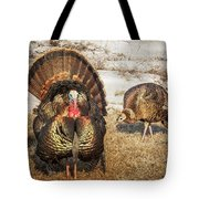 Tom Turkey And Hen Tote Bag