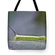 Tomato Hornworm - Manduca Quinquemaculata - Five Spotted Hawkmoth Tote Bag