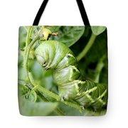 Tomatoe Hornworm Tote Bag
