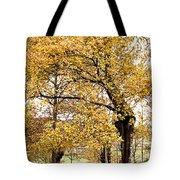 Tombs Under Oaktree Tote Bag