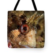 Tompot Blenny Portrait Tote Bag