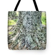 Tones And Textures Tote Bag