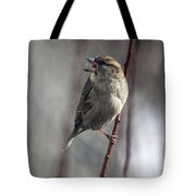 Tongue Of The Sparrow Tote Bag
