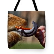 Carrots Are Good For You Tote Bag