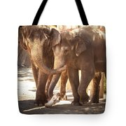 Tons Of Fun Tote Bag