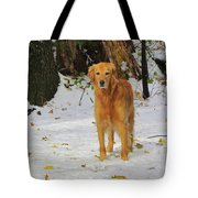 Too Early For Snow Mama Tote Bag