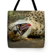 Too Funny Tote Bag