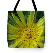 Too Pretty To Be A Weed Tote Bag