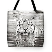 Top Cat Tote Bag by Scott Pellegrin