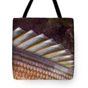 Top Fin Design Tote Bag