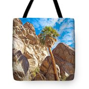 Top Of A Palm Near Top Of Andreas Canyon-ca Tote Bag
