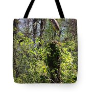 Top Of The Glades Tote Bag