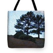 Top The Red Rocks Tote Bag