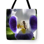Torenia From The Duchess Mix Tote Bag