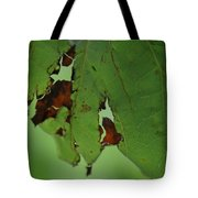 Torn Leaf Abstract Tote Bag