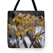 Toronto Ice Storm 2013 - My Garden In The Morning Tote Bag