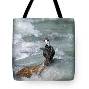 Male Torrent Duck Tote Bag