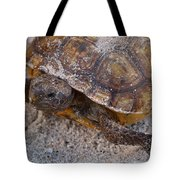 Tortoise By Nature Tote Bag