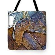Tortoise One Tote Bag