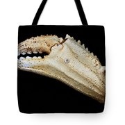 Toucan Crab Claw Tote Bag