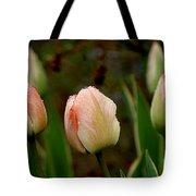 Touch Of Peach Tote Bag