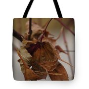 Touched By Jack Frost Tote Bag