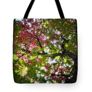 Touches Of Autumn  Tote Bag