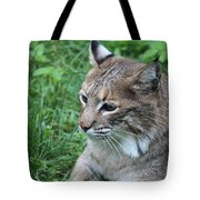 Tough Cat Tote Bag