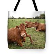 Tough Cows Tote Bag