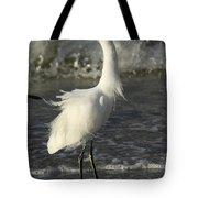 Tousled Egret Tote Bag
