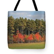 Towering Evergreens Tote Bag