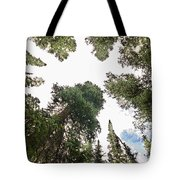 Towering Pine Trees Tote Bag