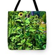 Towering Sunflowers Tote Bag