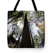 Towering Timber Tote Bag