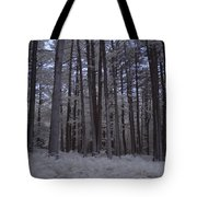 Towering Trees Over Ferns In Blue Tote Bag