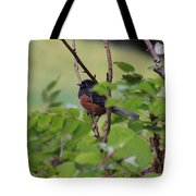 Towhee Keeps Watch On High Tote Bag by Kym Backland